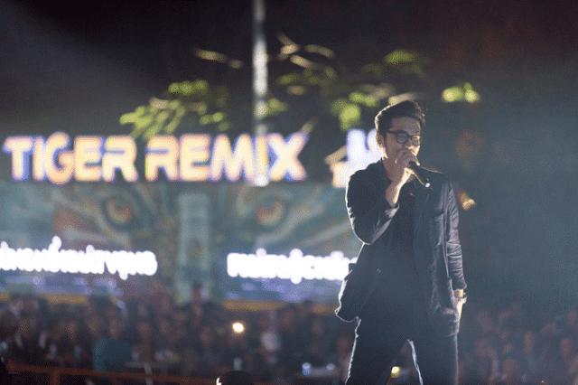 thai vu singer tiger remix 2020
