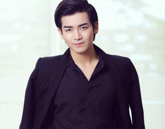 bb tran vietnam idol