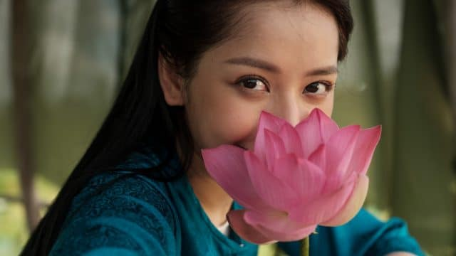 chi pu cung dan vo doi lotus flower
